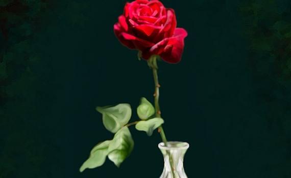 178. La rosa – Novella